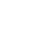 lamb homekill